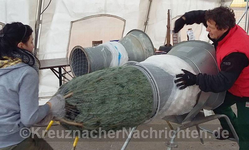 091216-zimmermann-tannenbaum-verpacken